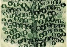 Как узнать историю семьи?