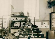 «Квартирный вопрос» Саткинского музея