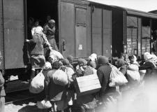 База данных эвакуированных жителей в Челябинскую область