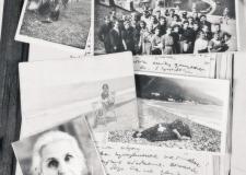 из фондов ОГАЧО - к дню архивного работника